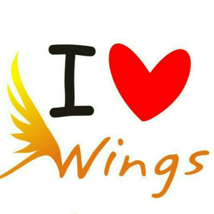 Wings Estudio Integral de Danzas