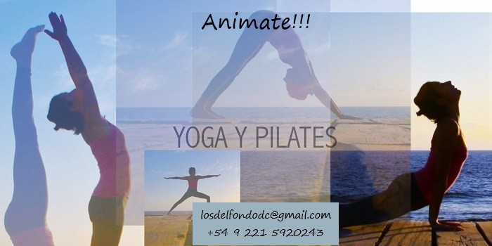 Clases de Estiramiento y flexibilidad, Pilates Mat y Yoga