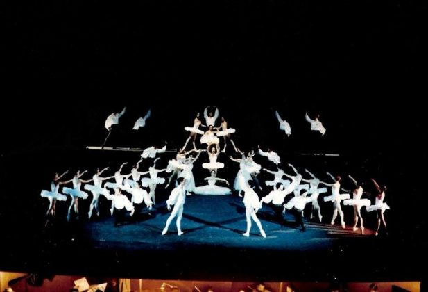 Ballet del Sur